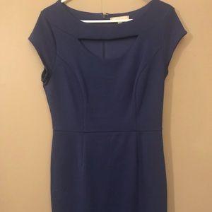 Blue Stretch Knit dress